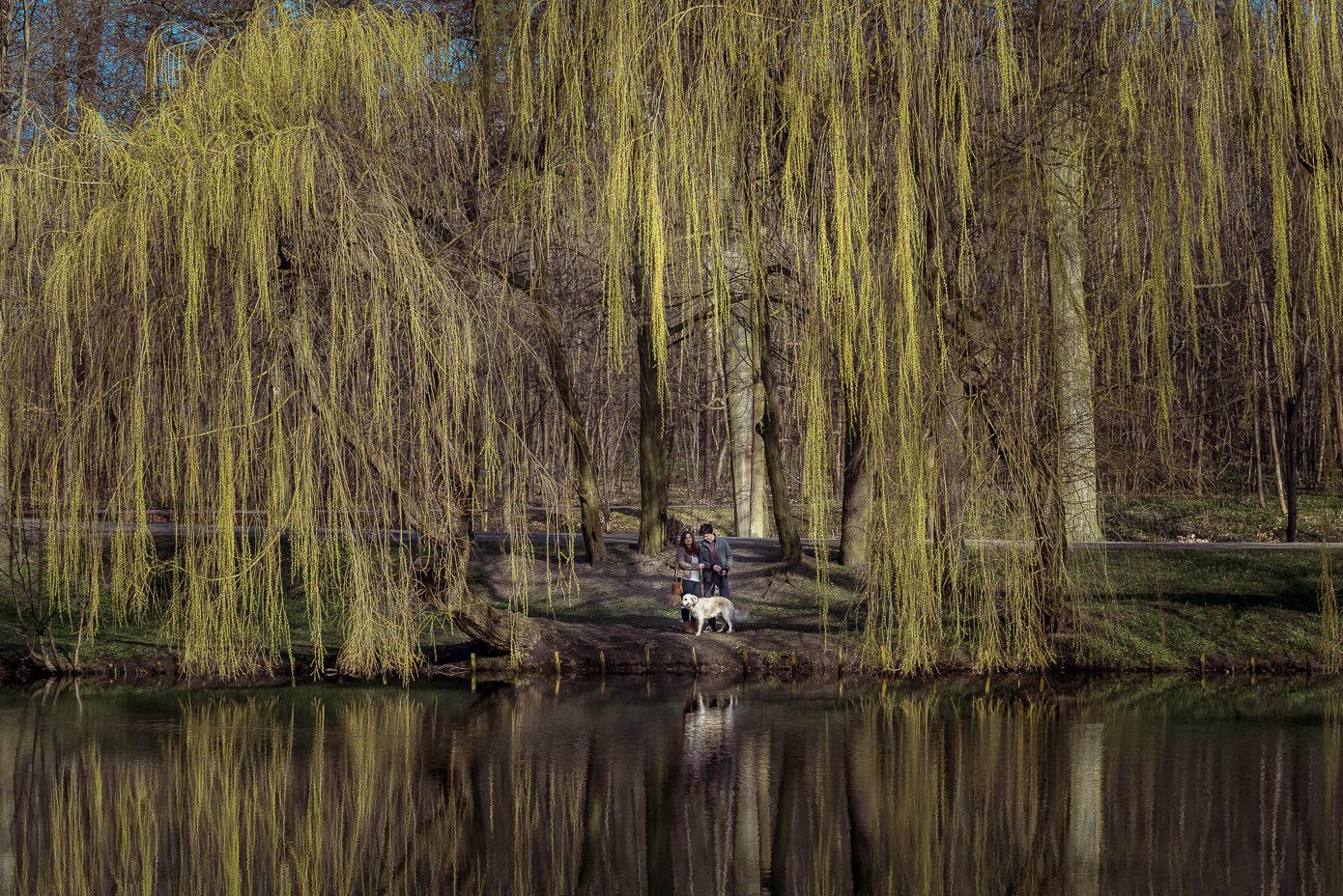 Sesja narzeczeńska w Parku Oruńskim