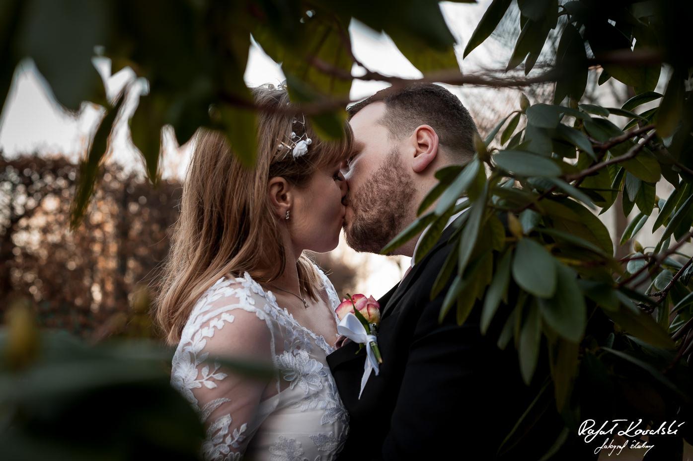 Plener Ślubny Gdynia - pocałunek młodej pary sfotografowany w prześwicie zielonych liści